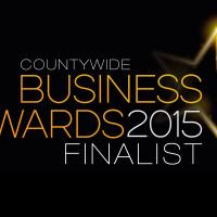 buusiness awards
